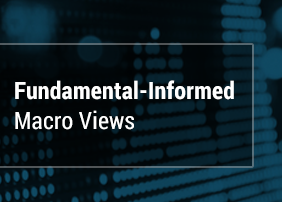 Fundamental-Informed Macro Views